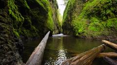 Oregon Columbia Gorge River Canyon - stock footage