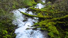 Oregon Columbia Gorge River Gorge Creek - stock footage