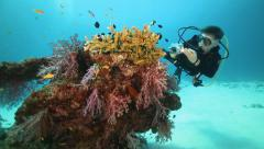 Scuba diver taking photo of colorfull coral reef - stock footage