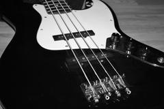 Squier J Bass Body - stock photo