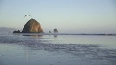 Oregon Coast Beach Haystack Rock - stock footage