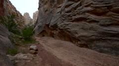 Stock Video Footage of Hiker in South Cottonwood narrows near Road 400 Utah