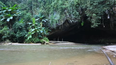 Jungle river flow into cave Stock Footage