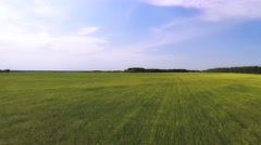 Aerial drone flying over summer field Stock Footage