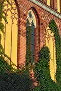 Koenigsberg Cathedral, facade fragment Stock Photos