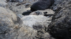 Trickle of mountain stream Stock Footage