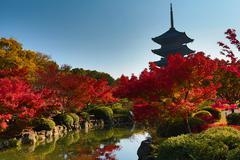 To-ji Pagoda in Kyoto, Japan during the fall season. Stock Photos