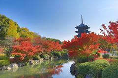 Stock Photo of To-ji Pagoda in Kyoto, Japan during the fall season.