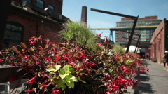 Row Of Flower Planters On A Patio Stock Footage
