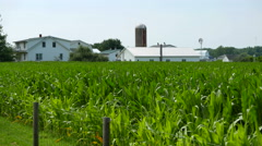 Indiana Farmland Cornfield Stock Footage