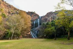 Walter Sisulu National Botanical Garden - stock photo