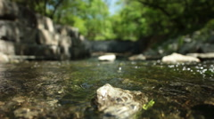 Shallow Focus Stream Through Ravine Stock Footage