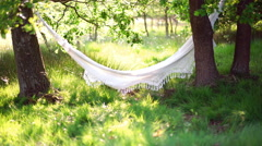 Empty inviting hammock in summer park - stock footage