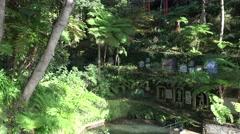 4k Tropical garden Madeira overview panning shot Stock Footage