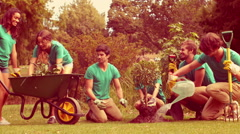 Happy group of volunteers gardening in the park - stock footage