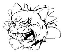 Attacking wildcat head - stock illustration