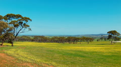 Australian Farm Landscape View Stock Footage