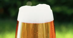 Cold beer in pint glass looking refreshing outdoors greenery in background - stock footage