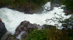 Mountain stream in the forest. Stock Footage