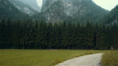 Forest clearing in Austria, Obertraun. Stock Footage