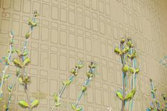 Vivid photo of green buds against office building in spring Stock Illustration