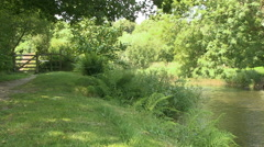 Verdant Summertime Footpath on the Banks of the River Barle in Somerset - stock footage