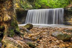 Waterfall at Indian Run Kuvituskuvat
