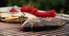 Whole fish being grilled on a barbecue outdoors - stock footage
