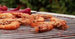 Prawns with chillie seasoning cooking outdoors on a barbecue grill - stock footage