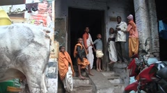 The cow crowned in the alleys of Varanasi in India Stock Footage