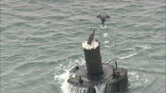 AERIAL United States-Sunken Wreck Stock Footage