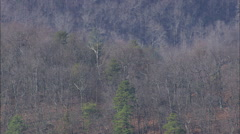 AERIAL United States-Long Tree Covered Ridges Stock Footage