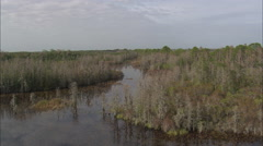 AERIAL United States-Okefenokee Swamp Stock Footage