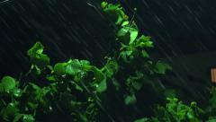 Strong winds and rain shook the trees in dark night. 4K UHD stock footage - stock footage
