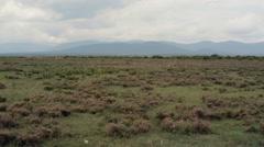 Empty savannah in Africa, Samburu, Kenya, pan right Stock Footage