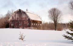 Wintertime Farm Field Barn Agricultural Structure Ranch Building Kuvituskuvat