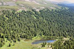Forest landscape of the Sayan Mountains. Siberia. Khakassia. Stock Photos