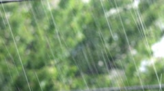 Tropical heavy rain in rainforest background Stock Footage
