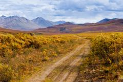 Fall color Tombstone Territorial Park Yukon Canada - stock photo