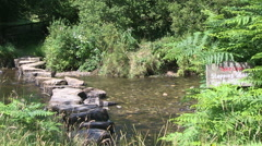 Stepping Stones Across the River Barle in Exmoor National Park Somerset Engla Stock Footage