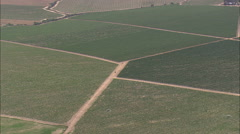 AERIAL South Africa-Vineyards To The West Of Paarl Stock Footage
