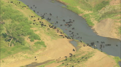 AERIAL United States-Bends In The Grand River - stock footage