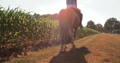Girl on a lush green farm riding her horse - stock footage