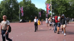 Main street  in Westminster,  connects Buckingham Palace with Trafalgar Square. Stock Footage