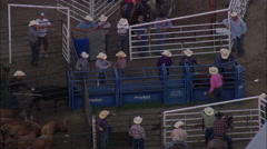 Stock Video Footage of AERIAL United States-Calf Roping
