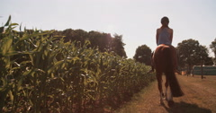 Girl riding her horse on a lush green farm path - stock footage