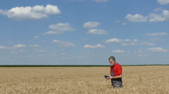 Stock Video Footage of Agriculture, farmer or agronomist in field examine crop