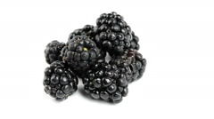Wild berries on white background Stock Footage