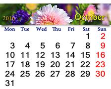 calendar for October 2016 with the pink asters - stock illustration