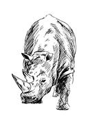 Drawing of a rhino - stock illustration